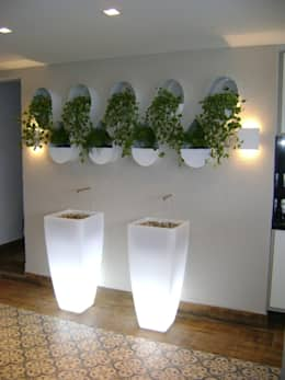 Four Harmonized Pots for Beautiful and Charming Indoor Garden Designs