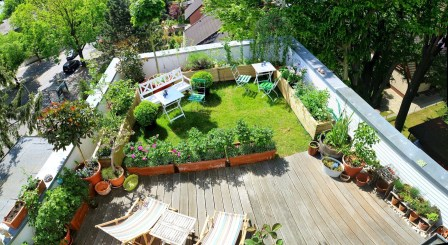 Rooftop Garden Accent With Planting Media
