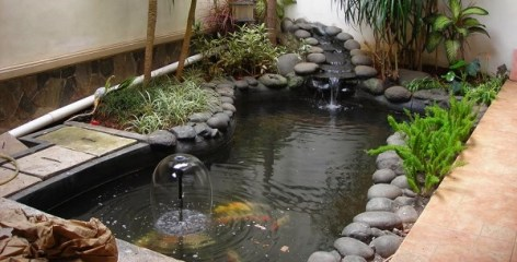 The Rest of The Rocks for Awesome Tips for Placing a Fish Pond in the Family Room