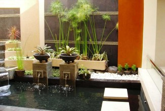 Wet Park For Beautiful And Charming Indoor Garden Designs
