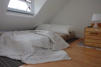 Bed Under A Sloping Roof