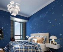 Lights and Window for Bedroom for Teenage Boys