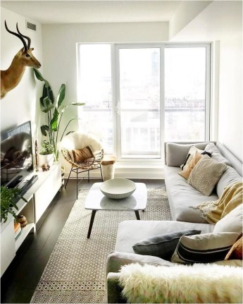 Scandinavian Small Living Room