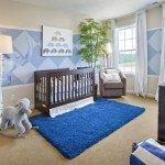 Baby Boy Room Decoration Ideas (5)