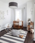 Modern Baby Room With Animal Accent