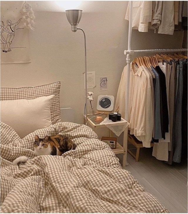 Hanging Clothes Ideas For Korean Bedroom