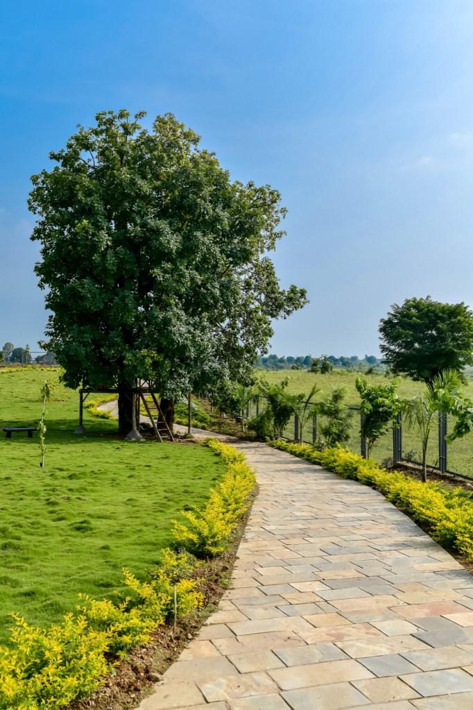 Lehar Sa Resort, at Madhai, Madhya Pradesh, by Akshay Selukar 52
