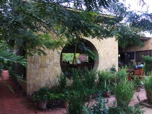 Kamala Cafe, Experiential journey in Nature's bliss, by Studio Praxis, Ahmedabad, India