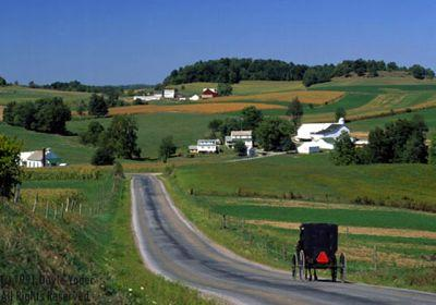 Image result for amish farm
