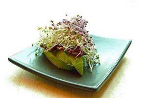 graine-germee-salade
