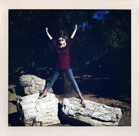 Cybele conquers the petrified wood