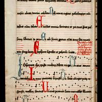 561 codex sang 546
