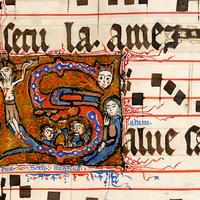 773 Gorgeous Manuscript
