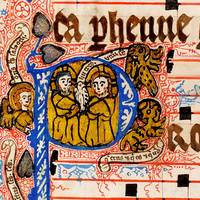 774 Gorgeous Manuscript