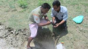 Soil pH testing at field level