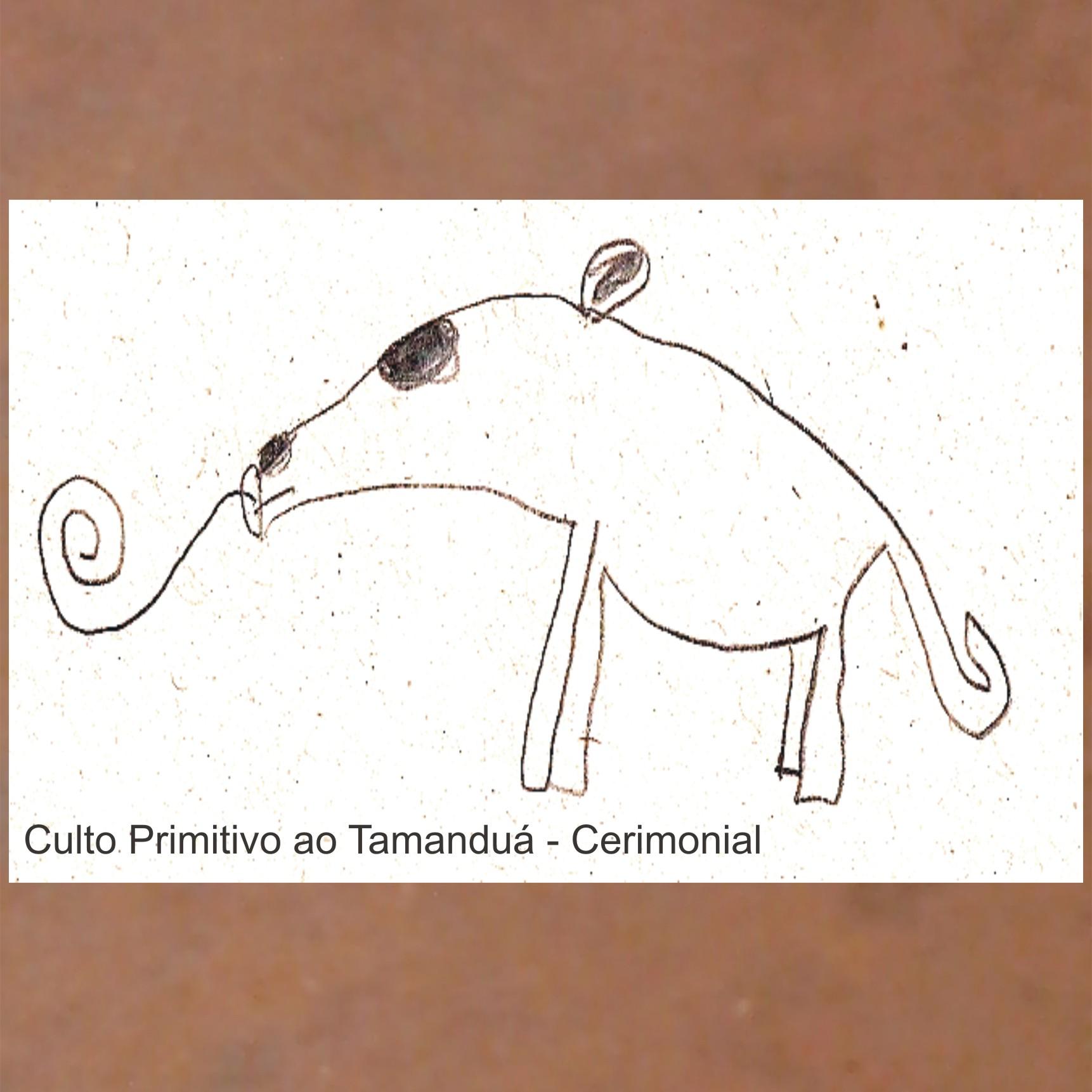 MSRCD024 - Culto Primitivo ao Tamanduá - Cerimonial