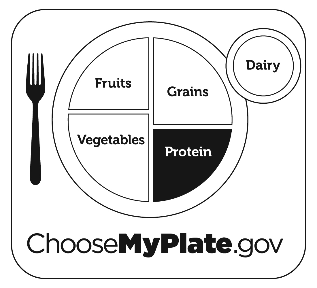 worksheet My Plate Worksheets myplate graphic resources healthy life food and sport free resources