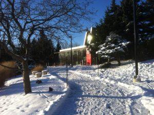 Humber Arboretum in Toronto- Snowshoeing Near Home