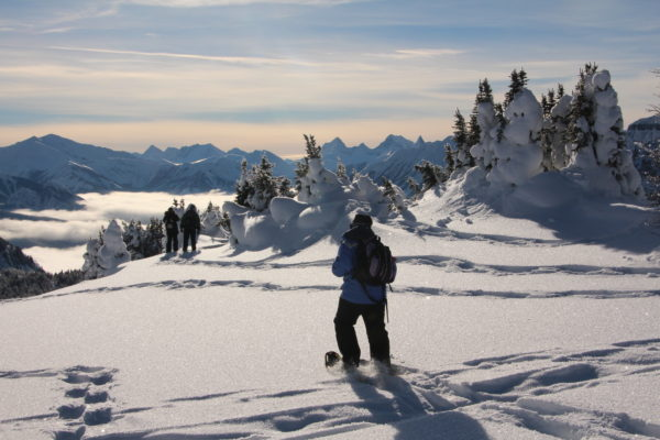 snowshoeing tour at Sunshine Village, Alberta