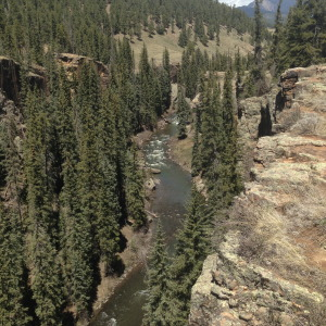 Looking down on the Piedra River Trail.