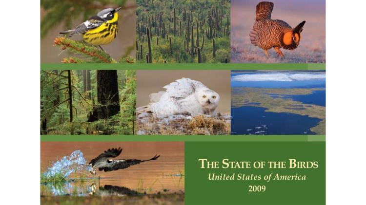 The State of the Birds (2009)