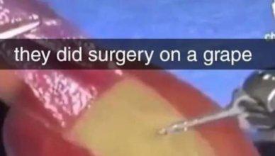 Chirurgie sur un raisin!