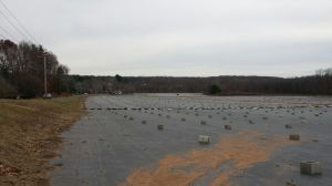 CHESHIRE, CT - Dec. 14, 2014 - 12142014LX02 - The former Pasqualoni Farm is now owned by CK Greenhouses, Inc.,