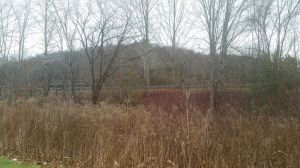 SOUTHBURY, CT: 07 Dec. 2016:120716BB01:SOUTHBURY ---- Southbury Corporate Park, 202 acres of undeveloped property, can be seen beyond the highway, when viewed from the back of the Mobil gas station parking lot on Main Street South. Bill Bittar Republican-American