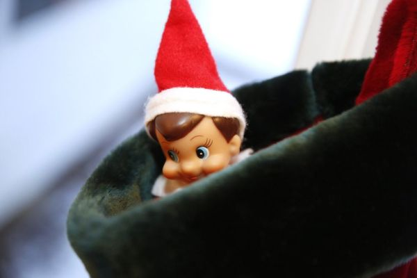 Michael the Shelf Elf is tucked in stocking and the Enger's home in Downers Grove, Ill., Dec. 9, 2013. (Chuck Berman/Chicago Tribune/MCT)