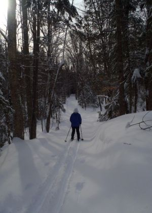 EasternSlopes.com Breaking Trail 2. We got out early and had the pure pleasure of skiing on 8 inches of untracked snow between the AMC's Little Lyford Pond and Gorman Chairback Lodge near Greenville, Maine