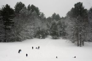 Snow-covered trees are the backdrop for residents sledding at Major Besse Park in this 2016 photo. Another storm and possibly snow day, are in the forecast for today. Republican-American