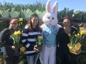 CHESHIRE -- From left: Volunteer Alison Campbell, Lori Walling, center for human development assistant program director, a volunteer Easter Bunny, Shelley Keegan, volunteer and Cornerstone Church member at the church's Easter flower sale, which raises money to allow the Center for Human Development's Hospitality Center in Waterbury open to the homeless on weekends during the winter months. Ajhani Ayres/ Republican-American.