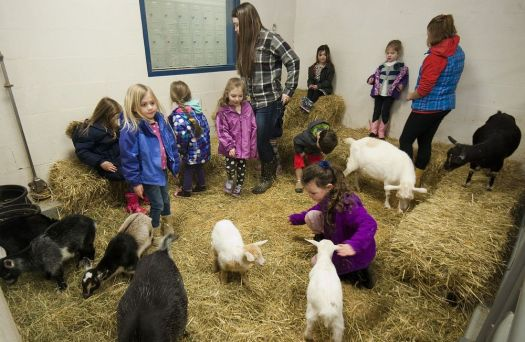 In this 2015 photo, students from the STAR Pre-School program in Region 14 visited the Agri-Science program at Nonnewaug High School in Woodbury to meet the animals. New science curriculum recently approved will provide elementary students with science labs, and a partnership with Flanders Nature Center and working with the regional agri-science prrogram will further enhance learning areas for animal science and agriculture.  Republican-American archives