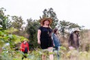 WOODBURY, CT. 23 September 2018-092318 - Kiri Clark, in the hat, leads a group of people in a therapeutic journey through the woods, using a technique inspired by the Japanese practice of shinrin-yoku, forest bathing, or taking in the forest atmosphere at the Flanders Nature Center Van Vleck Sanctuary in Woodbury on Sunday. Bill Shettle Republican-American