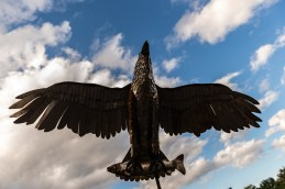 NAUGATUCK, CT. 29 September 2018-092918 - An metal sculpture Eagle was soaring over the streets during the third annual Ion Bank/Mission 22 Fall Festival in downtown Naugatuck on Saturday. Bill Shettle Republican-American