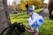 SOUTHBURY, CT. 26 October 2019-102619BS396 - Nava Mahoney, 18 months old walks over to pet a black spider decoration on the ground, during the ninth Annual Trick-or-Treat Spooktacular at the Southbury Center Firehouse on Saturday. The firehouse was transformed into a maze of different themed-rooms where kids could collect treats. Bill Shettle Republican-American