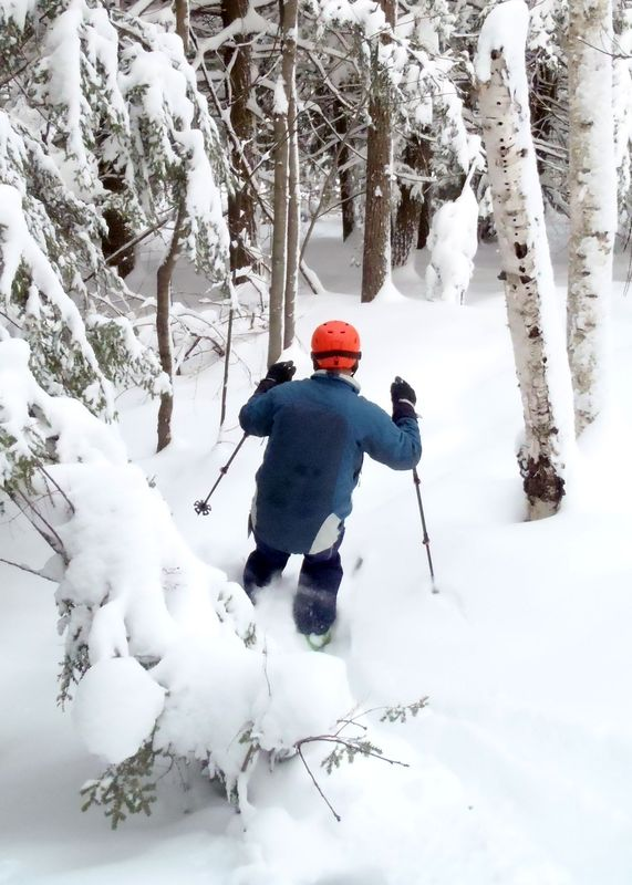 When the snow is deep, the woods become a skier