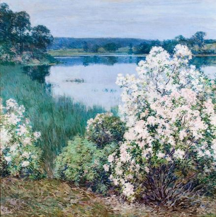 Willard Metcalf, Kalmia, 1905. Oil on canvas. Florence Griswold Museum