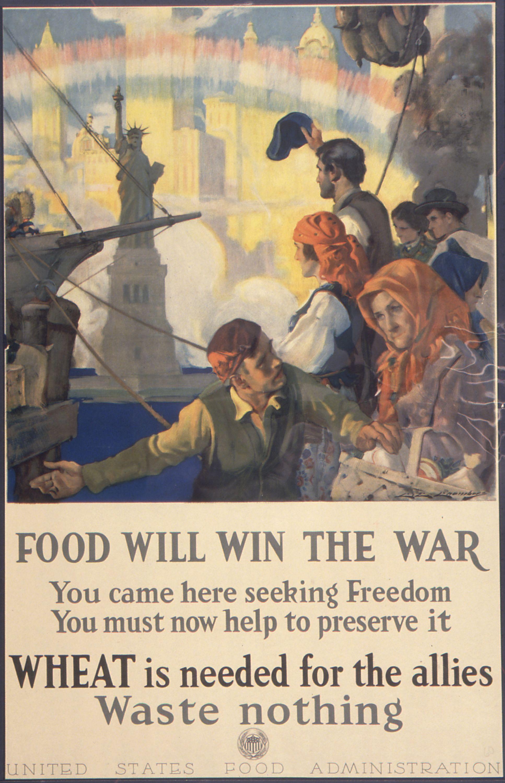 Propaganda Posters And The Common Core