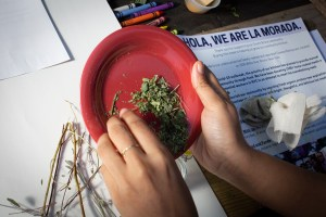 A hand crashing a mix of dry herbs on a red plastic plate. In the background over a wooden table there are papers, crayons, herb branches, flyers with information about La morada restaurant and its activities during the Covid-19 pandemic, and a canvas sachet of herbs tied with a fiber string. Photo by Cinthya Santos-Briones for Brewing Memories workshop, October 3, 2020.