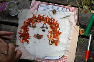 A drawing in the shape of a human face made out of honey and dry herbs (Marigold dried petals and Lavender).