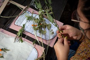 Cutting dry herbs. Brewing Memories, October 24, 2020. Photo by Cinthya Santos-Briones.