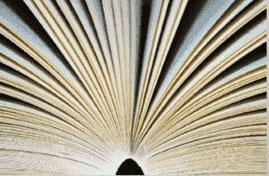 Classifica libri più venduti al 27 novembre 2016
