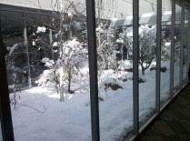 Snow in the office atrium