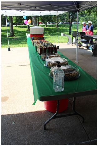 St. Louis Fragile X Walk - Cookies