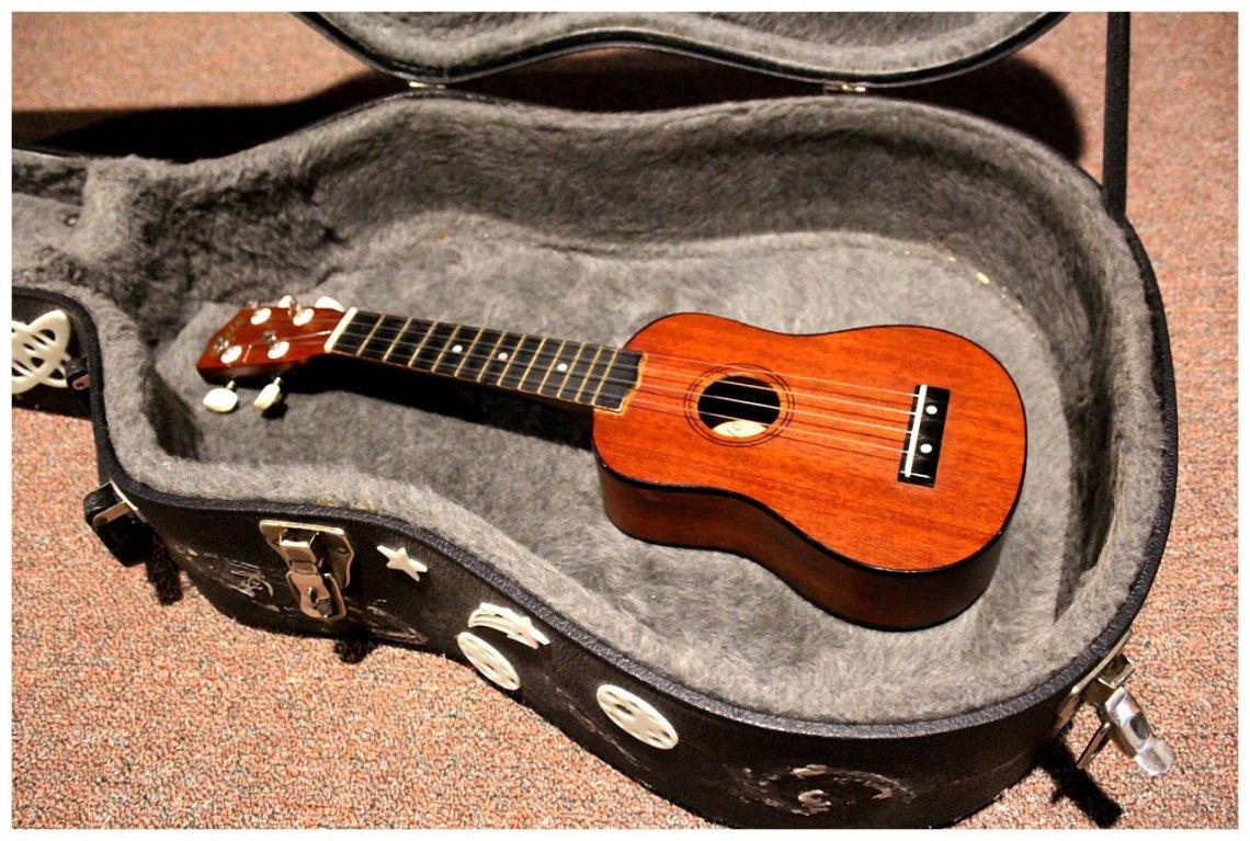 Ukulele in Guitar Case