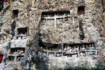 toraja-tombs-15213528