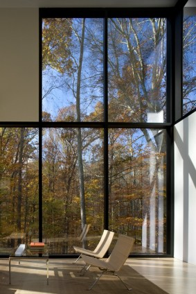 rising-glass-windows-for-maximum-forest-view