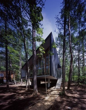 Wooden House in the Forest by Tezuka