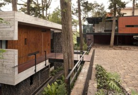 Large-Tree-Ideas-at-Modern-House-Design-that-Interact-Directly-with-Trees-Corallo-House-in-Guatemala